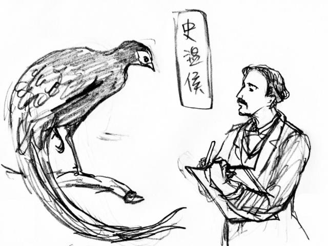 史溫侯素描草圖 (許書寧繪圖)